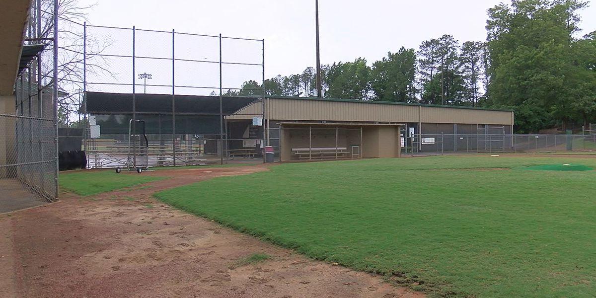Little League teams back on the practice field