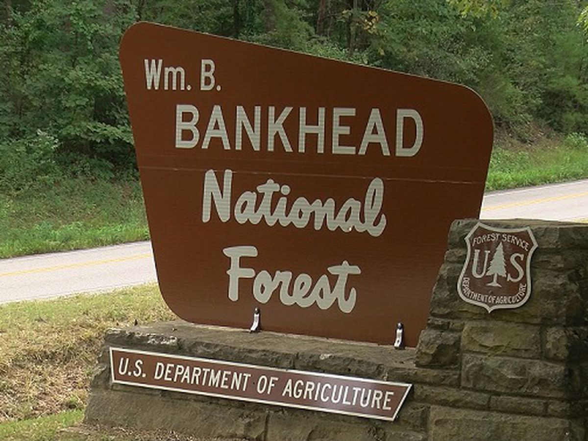 Hikers found with no injuries in Bankhead National Forest search