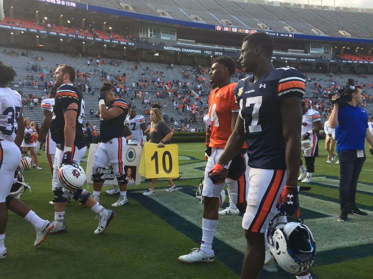 Malzahn pleased with quarterbacks after Auburn spring game