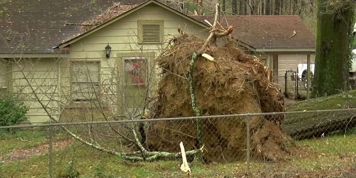 NWS: Brief EF-0 tornado hit Bessemer area Monday morning