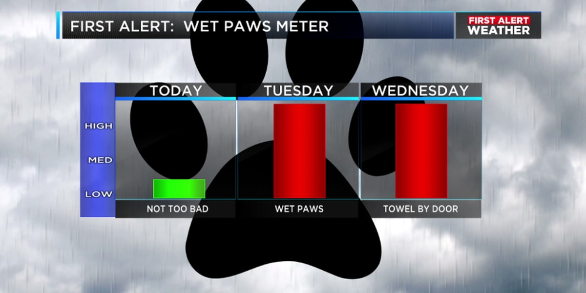 FIRST ALERT: Rain returns from south to north Monday night