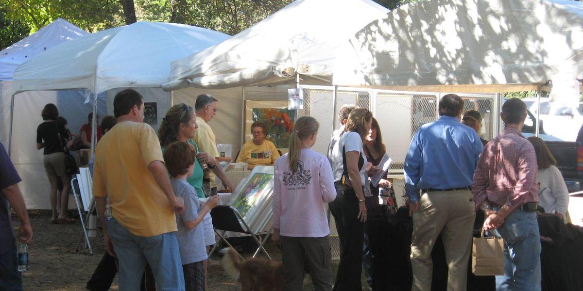 Bluff Park Art Show returning in October