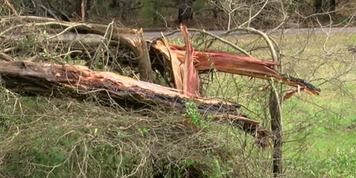 Chilton Co. residents 'thankful' to be OK after Thursday's EF-1 tornado
