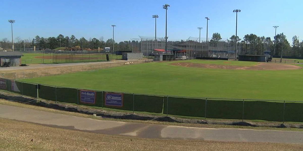 Vestavia Hills considering partnership to keep kids safe while playing sports
