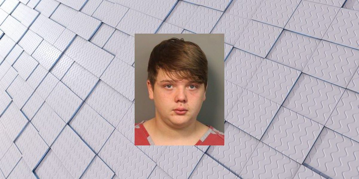 16-year-old charged with sexual torture of 11-year-old