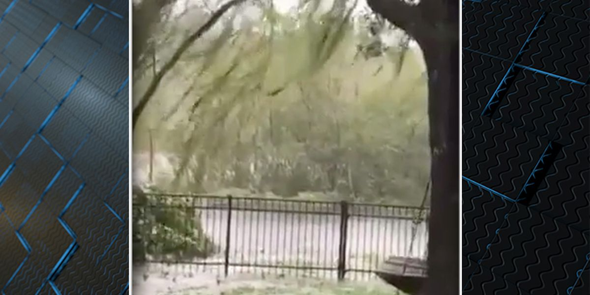 Lowcountry man captures surreal video of island of trees floating by during Hurricane Dorian