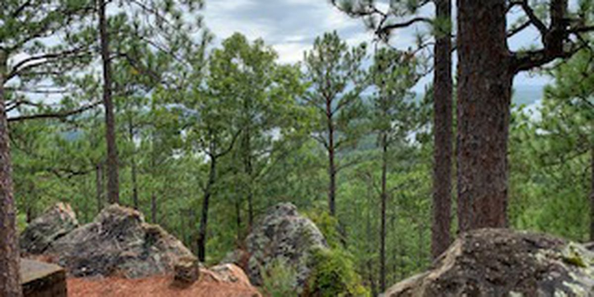 Take a hike: U.S. Forest Service celebrates public lands day with photo contest