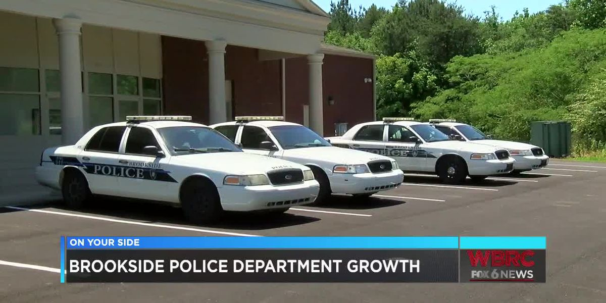Kidnapping arrest highlights Brookside Police Department
