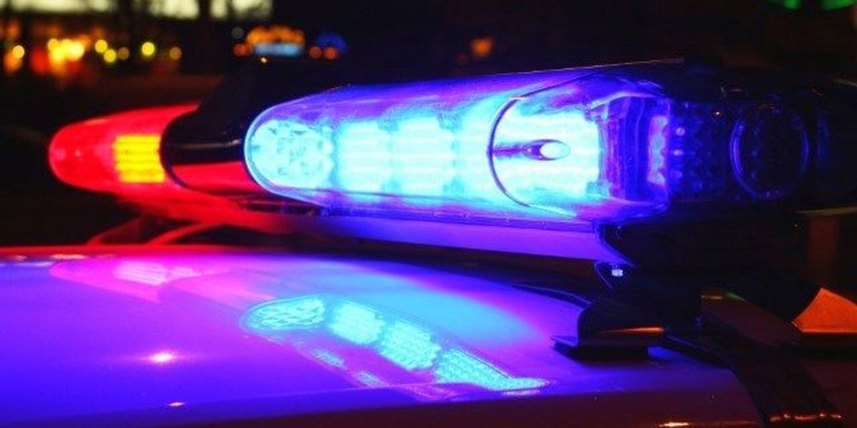 Forestdale man killed while walking his dog identified
