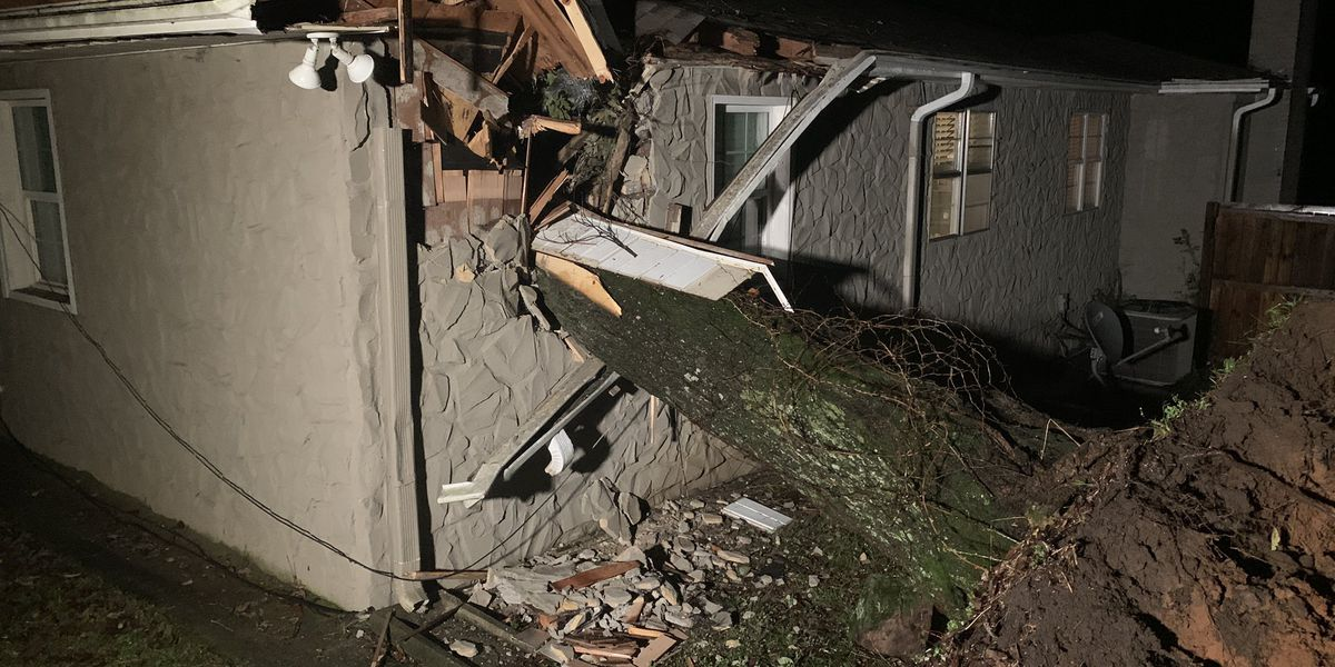 Tree falls through roof onto Hoover couple in bed