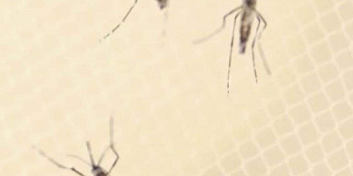 Zika virus worse than CDC originally thought