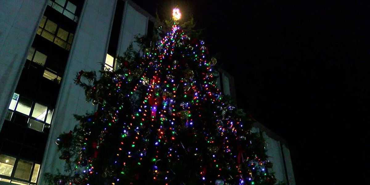 tuscaloosa councilwoman wants to see extra money for christmas decorations spent on bus route