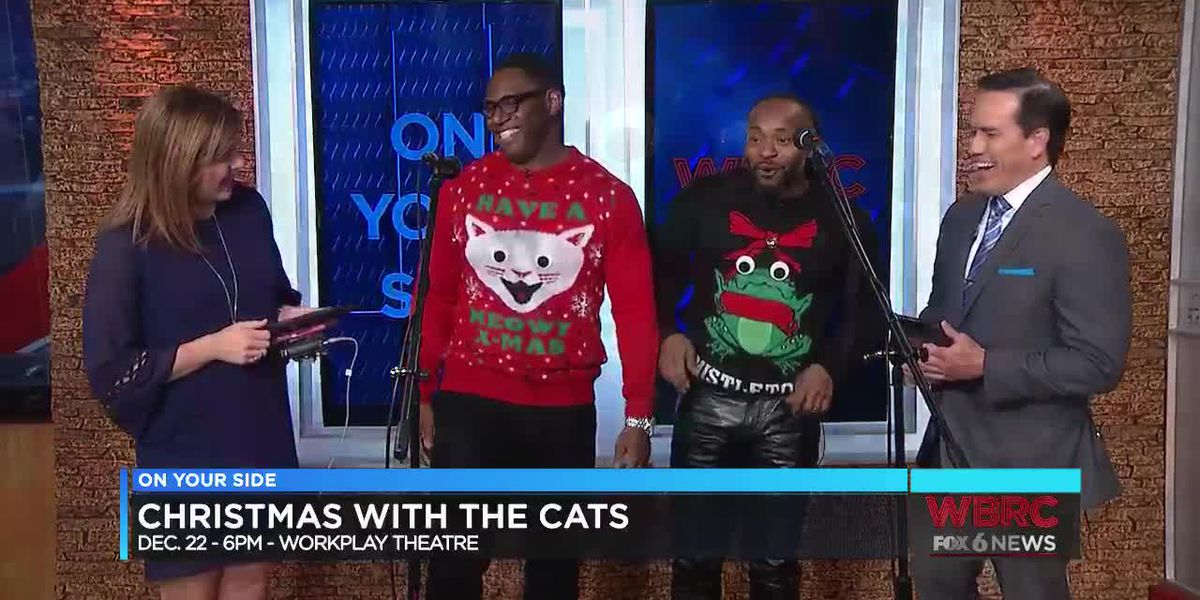 Christmas with the Cats