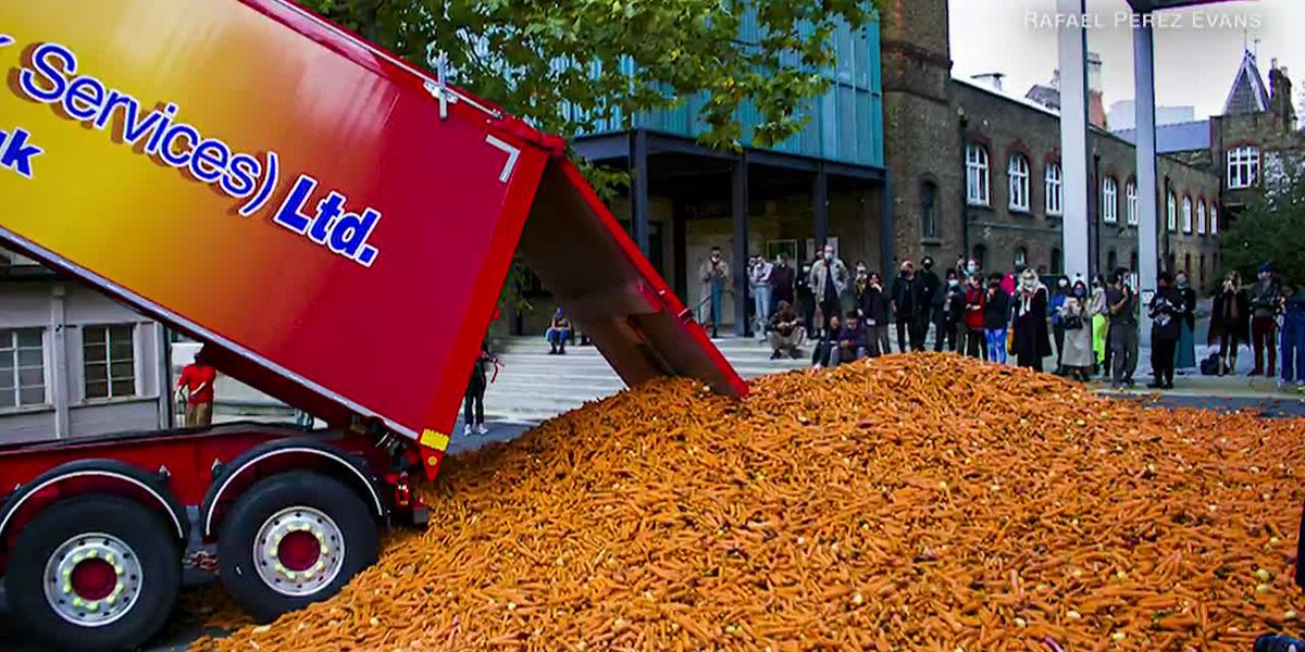 Carrot art: Artist dumps 31 tons of them in street