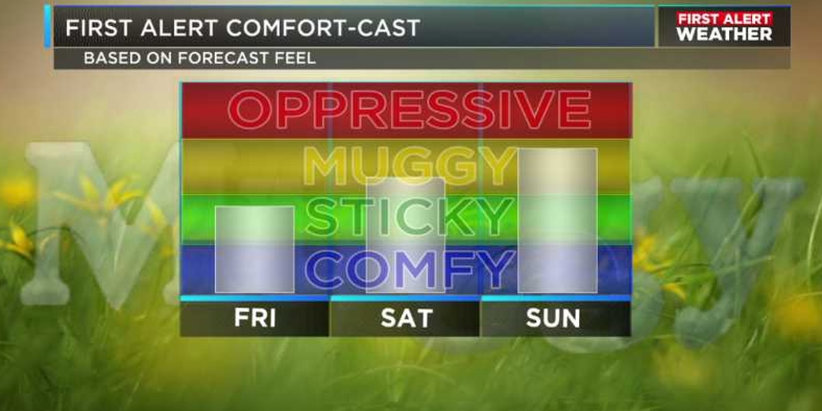 Humidity slowly increasing this weekend