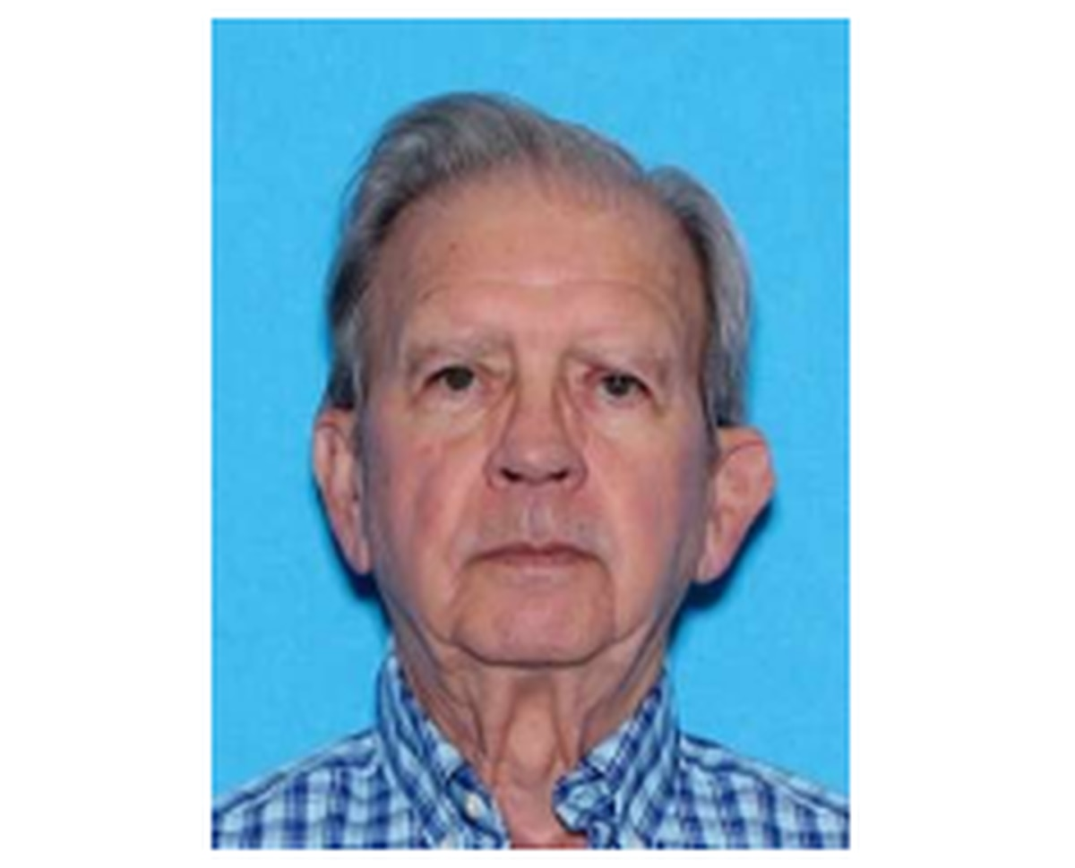ALEA issues alert for missing person