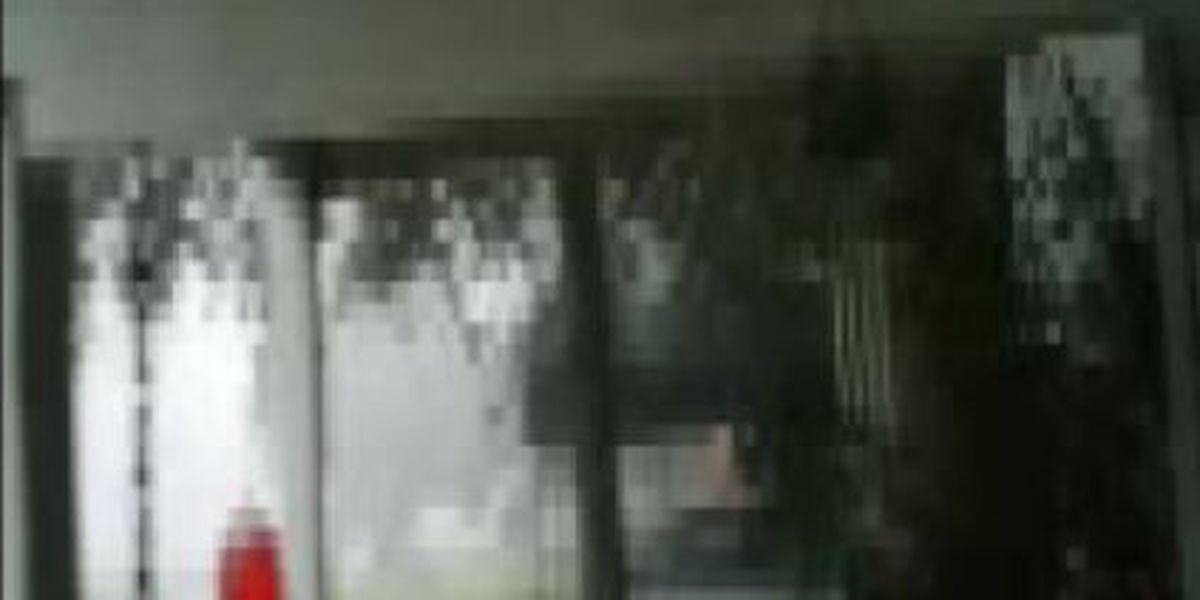 Jemison man captures footage of lightning strike near home
