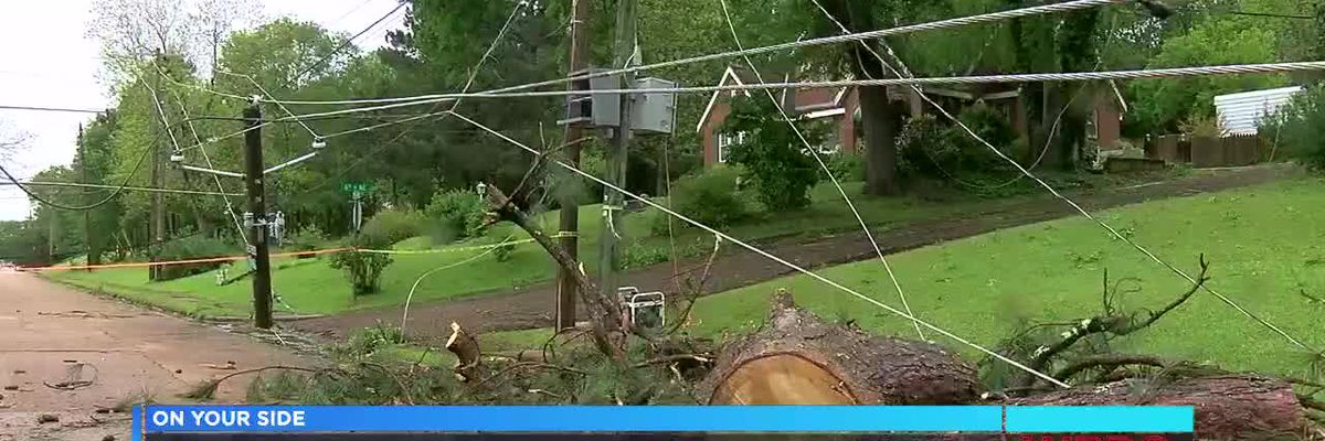 Cleaning up storm damage in Aliceville