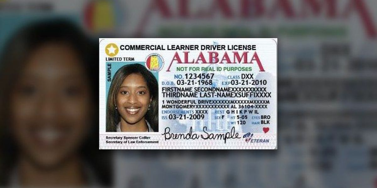 greenville al drivers license office