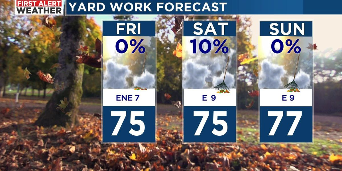 Mild temperatures with only spotty showers expected this weekend
