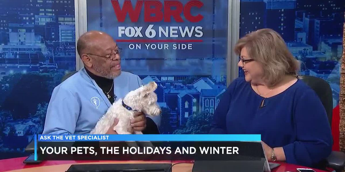 Your Pets, The Holidays and Winter