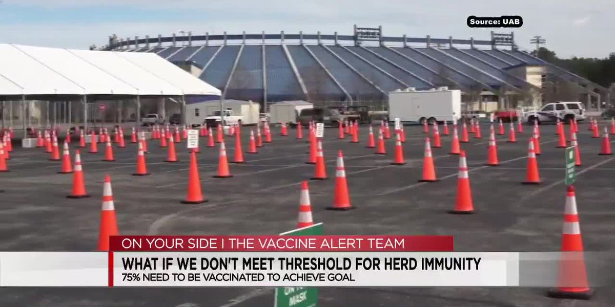 Vaccinated herd immunity explained through football