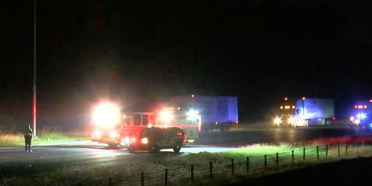 Man hit and killed on I-20/59 identified