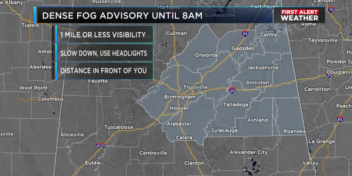 FIRST ALERT: Fog is forming rapidly, will create travel difficulties