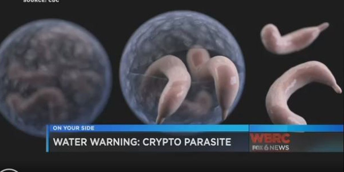 CDC reports Crypto on the rise around the country