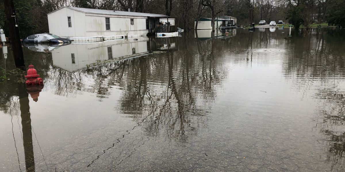 Flooding forces some Demopolis residents from their homes