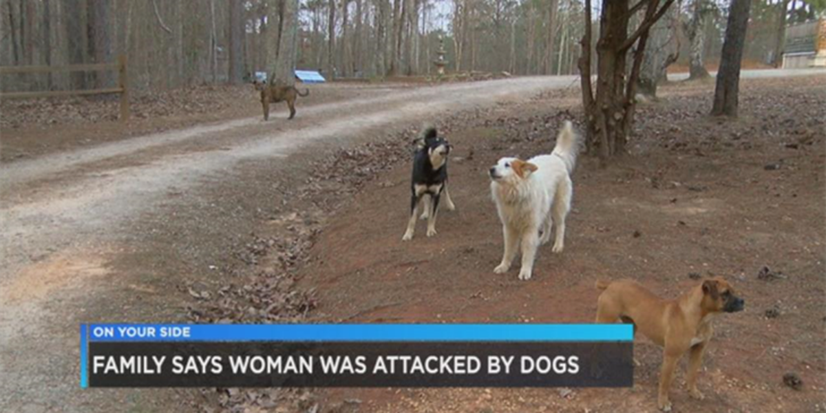 """Family: Woman """"ripped apart"""" by dogs in Walker County"""