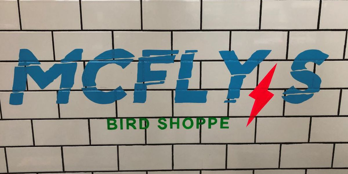 Take a chicken tender-filled trip to the 80's at McFly's Bird Shoppe