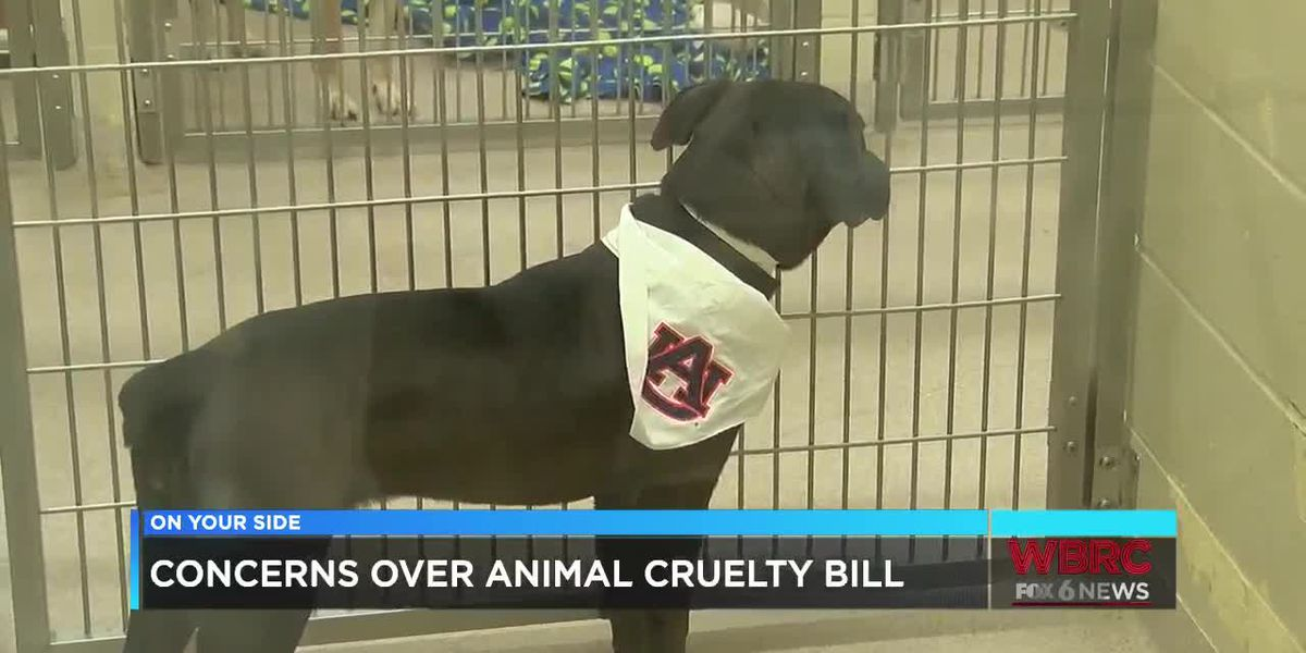 How a proposed bill would change Alabama's animal cruelty laws