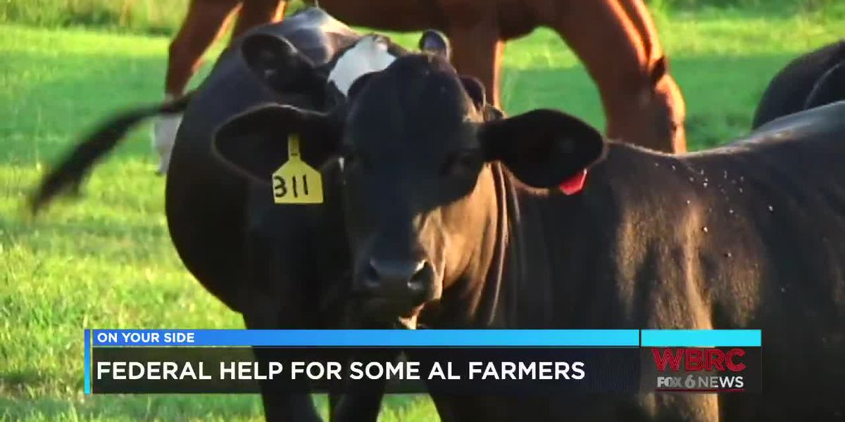 Federal help for some Alabama farmers