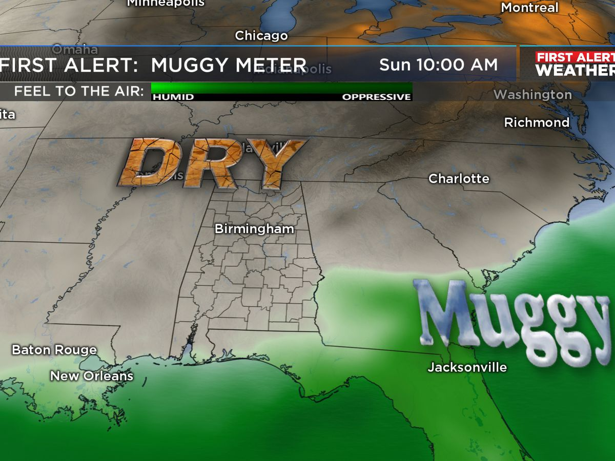 J-P: Less muggy air arrives for the weekend