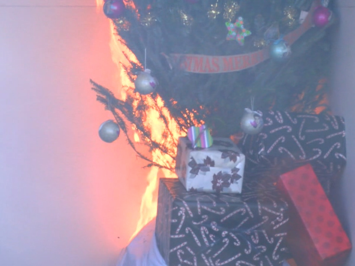 Fire official discusses Christmas tree fire safety