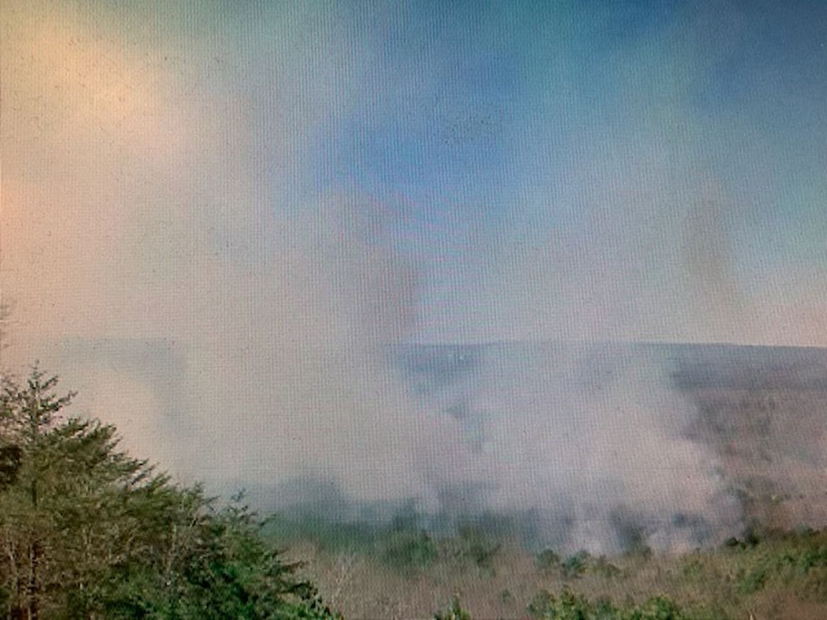 Controlled burn at Oak Mountain State Park