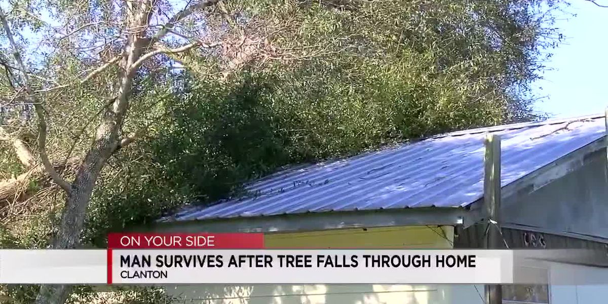 Clanton man survives after tree falls on home