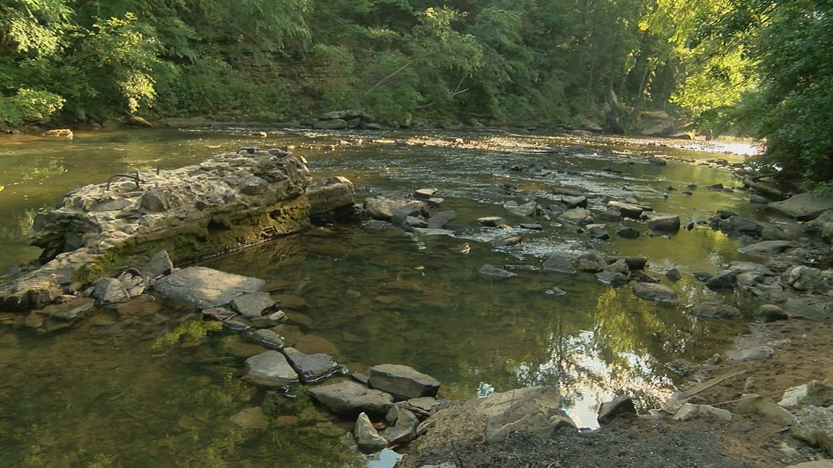 Riverkeeper group tests for E-Coli in nearly 20 locations along the Cahaba River