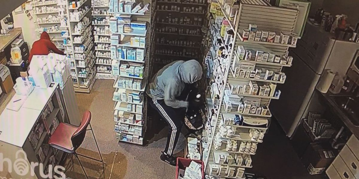 Homewood Pharmacy burglary suspects caught on camera