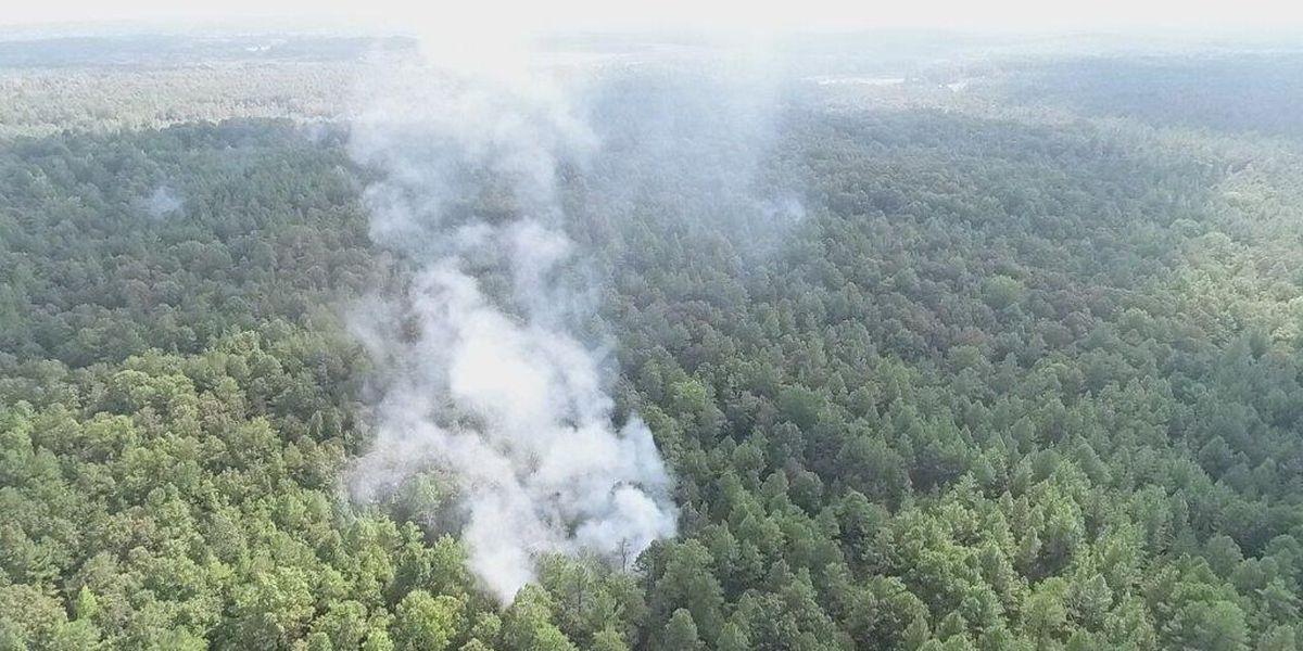 Big wildfire burns in Talladega County