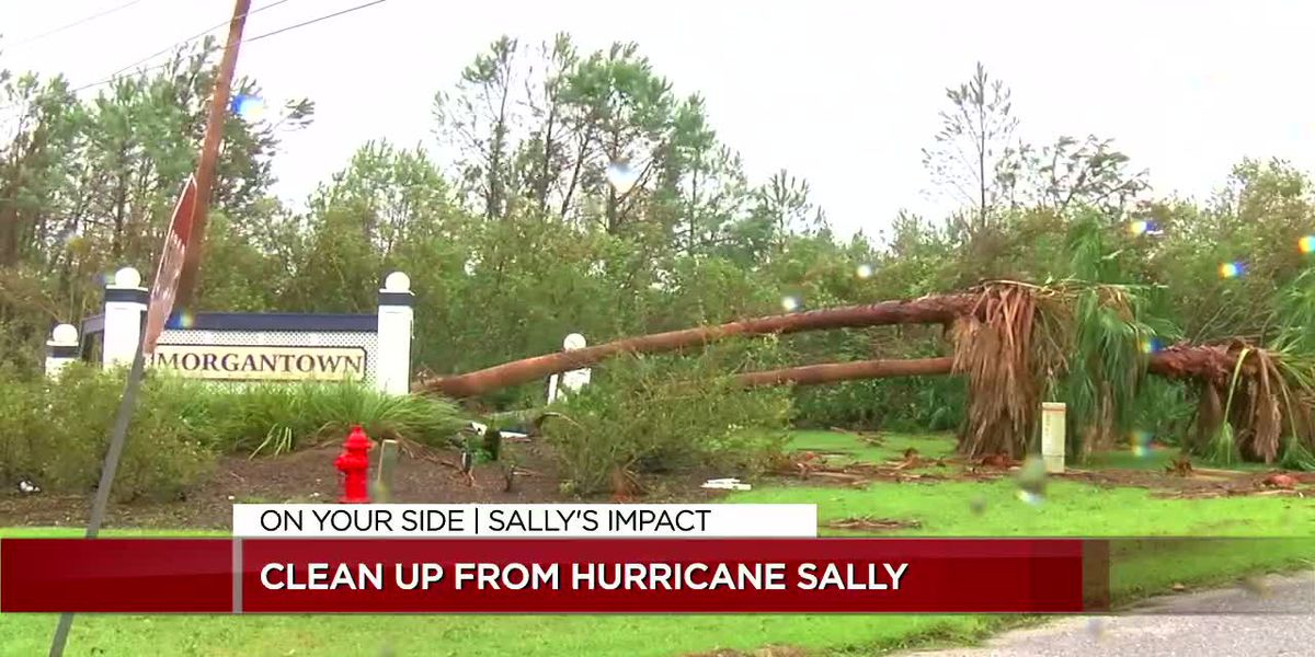 Clean up from Hurricane Sally
