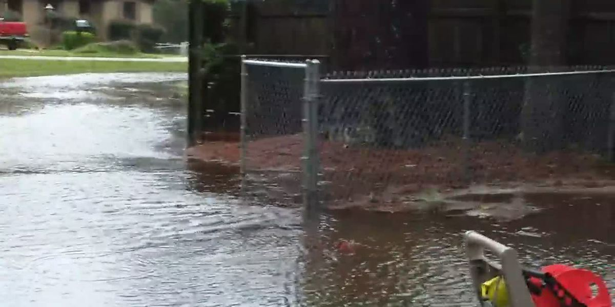 Tuscaloosa homeowner grapples with expensive flood repairs, city says they aren't on the hook