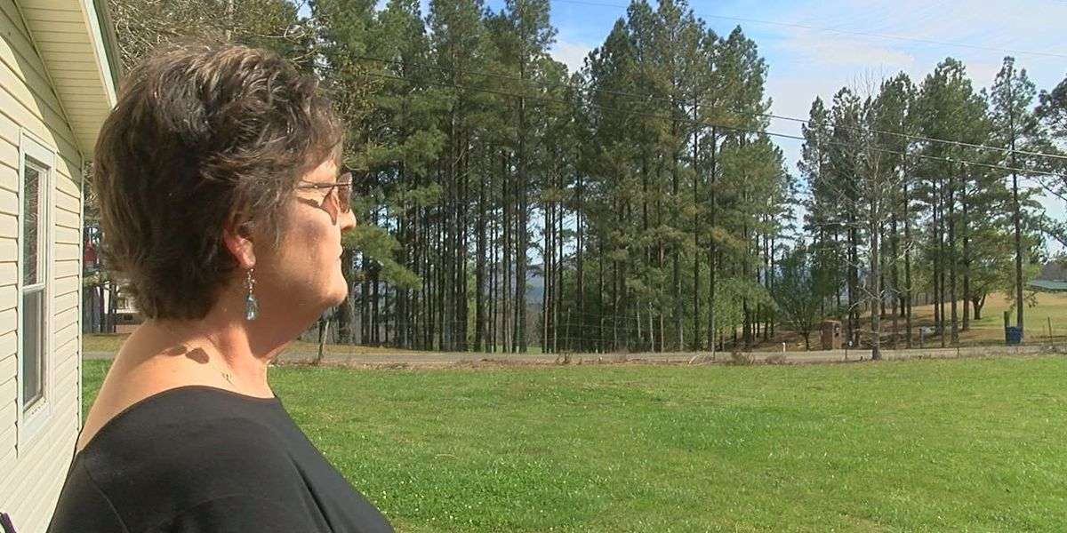 'It was like a ball of fire': Woman possibly witnesses fatal plane crash