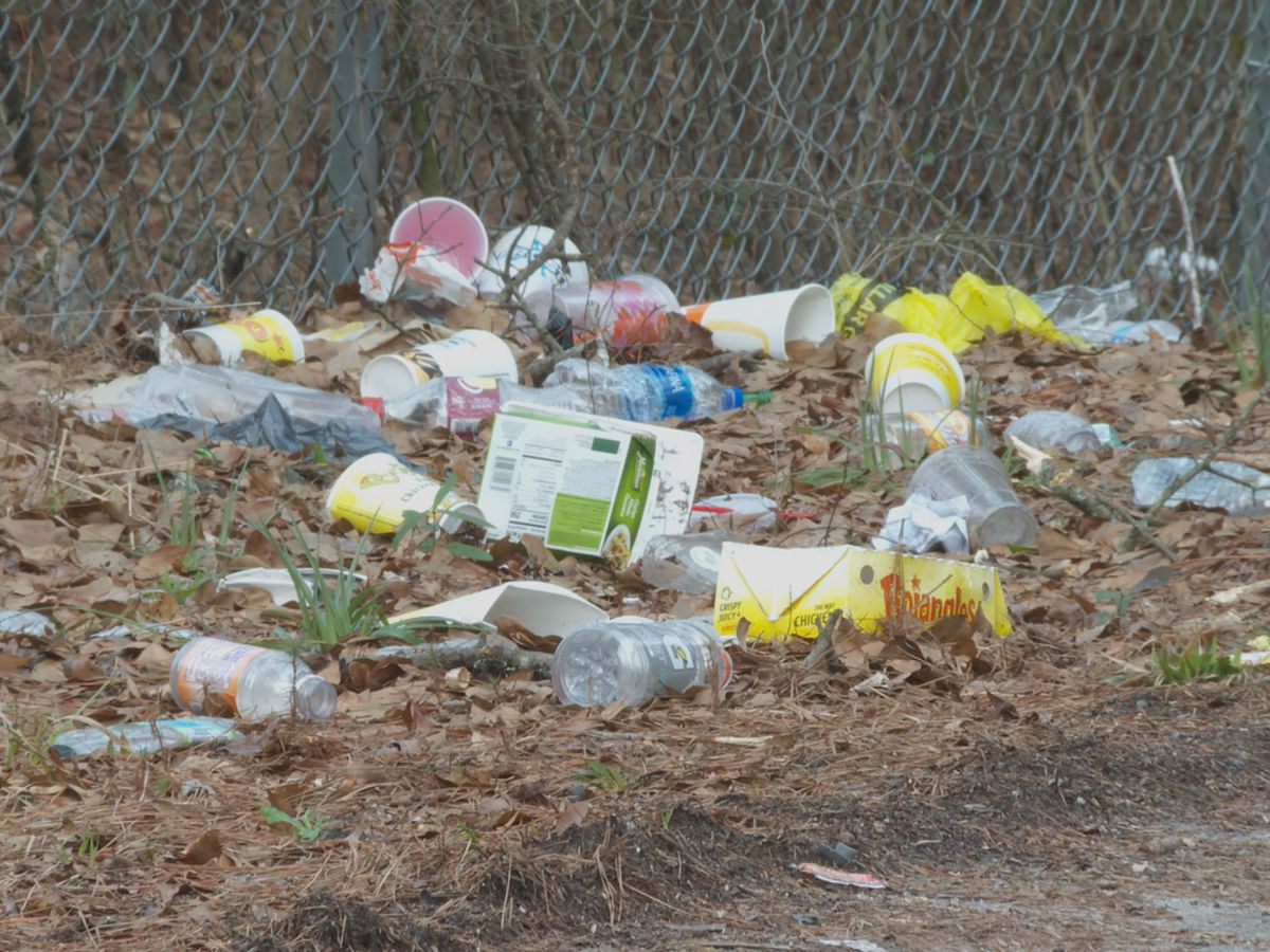Tuscaloosa District 2 litter cleanup