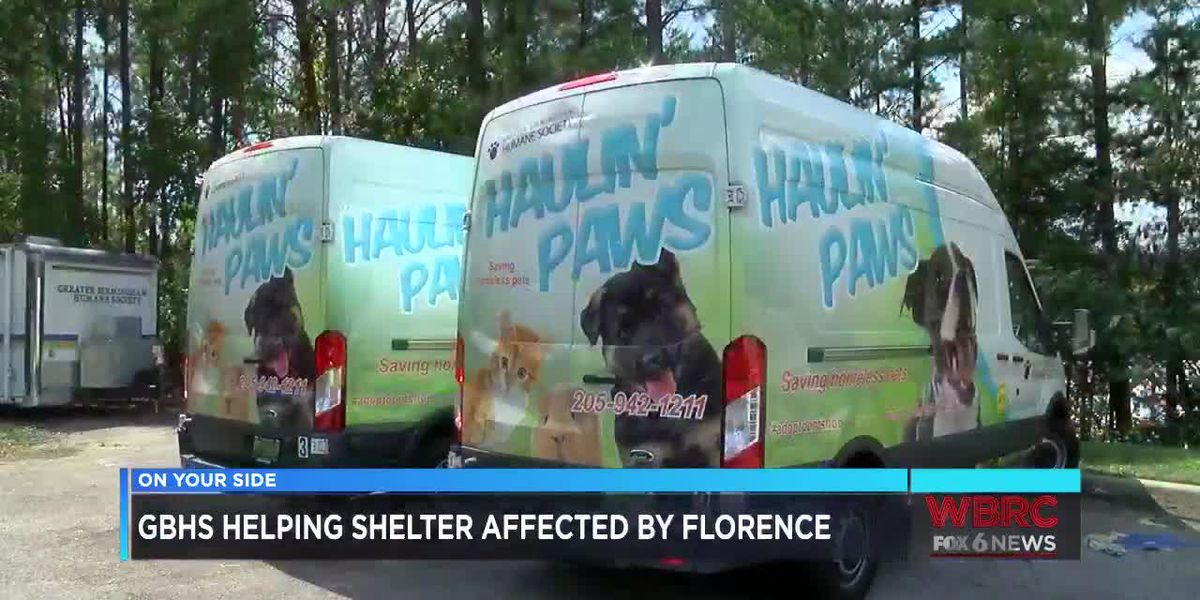 GBHS helping shelter affected by Florence