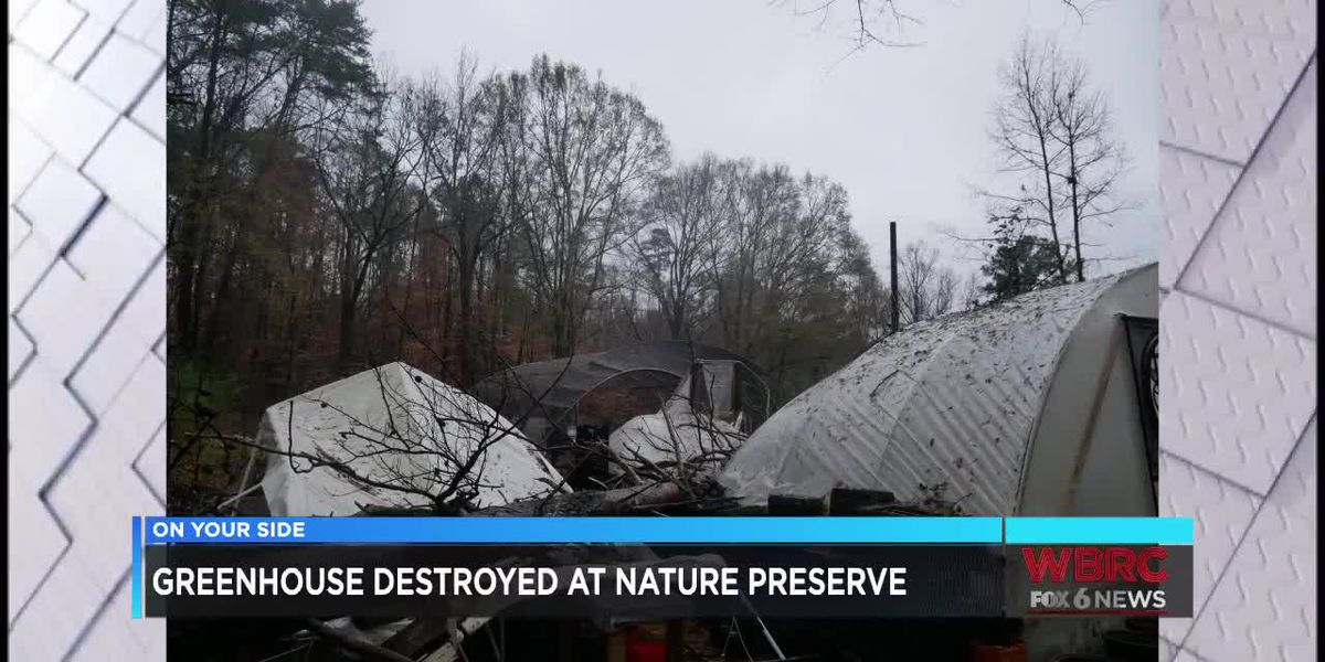 Greenhouse destroyed at nature reserve