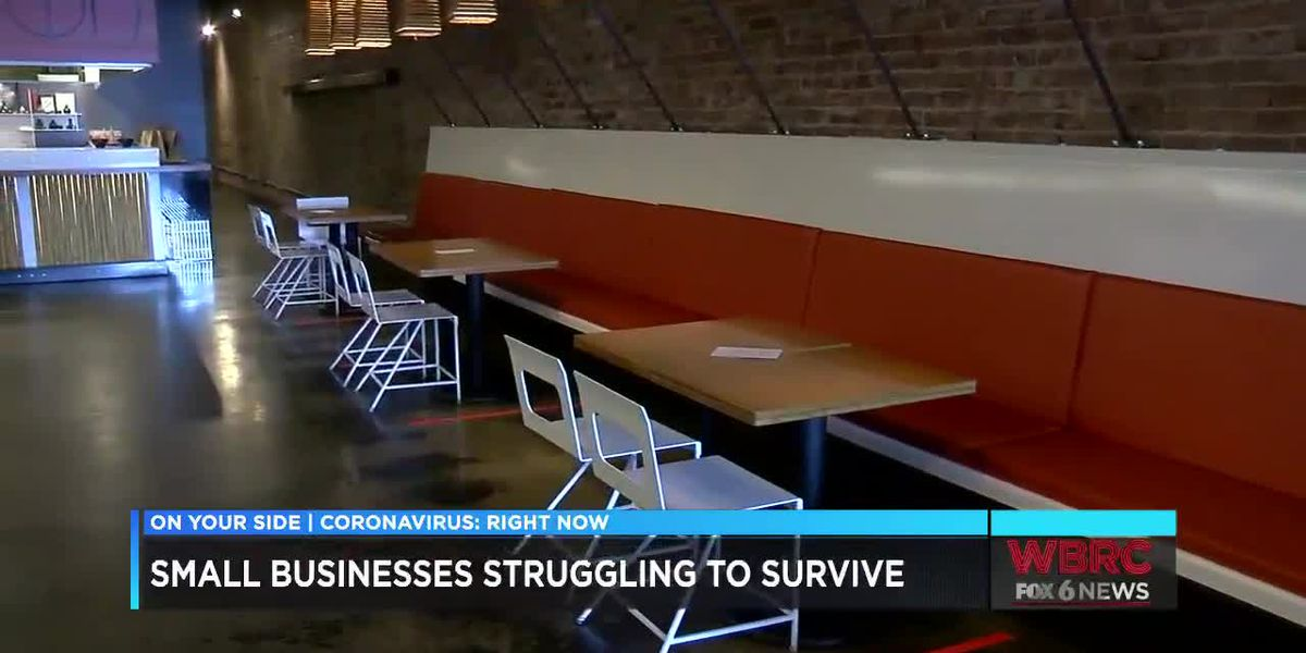 Small business struggling to survive