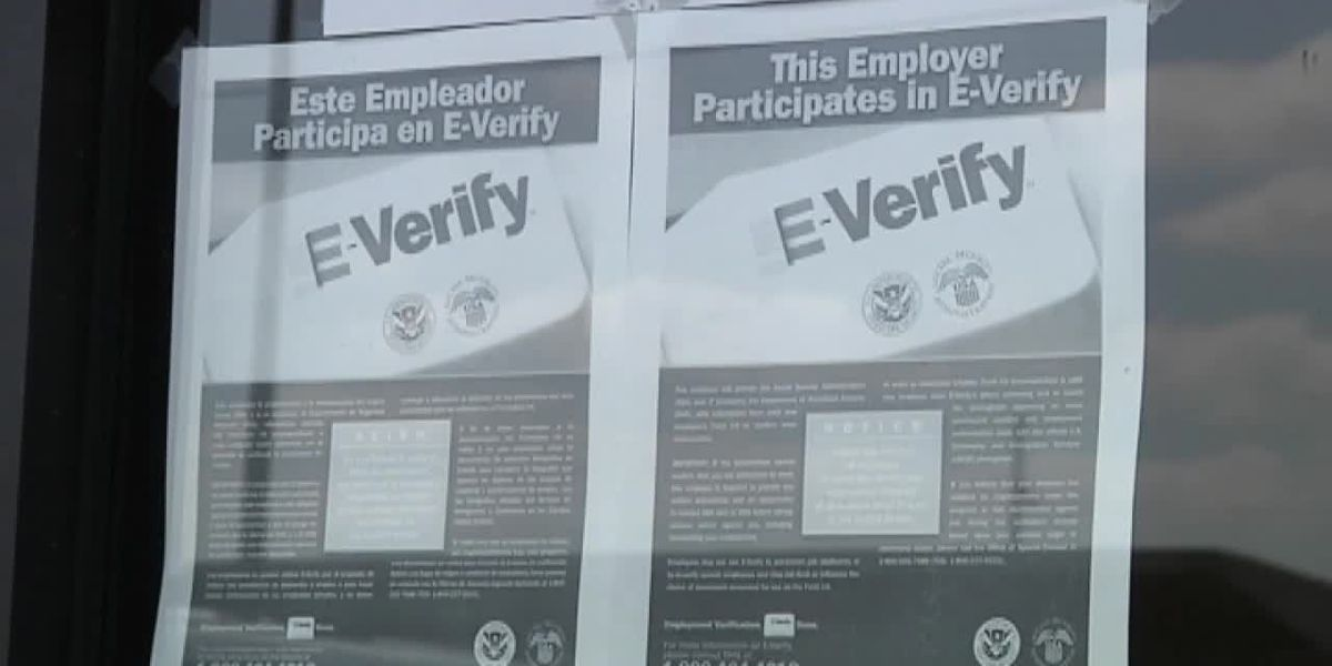 On Your Side Investigation: E-verify down