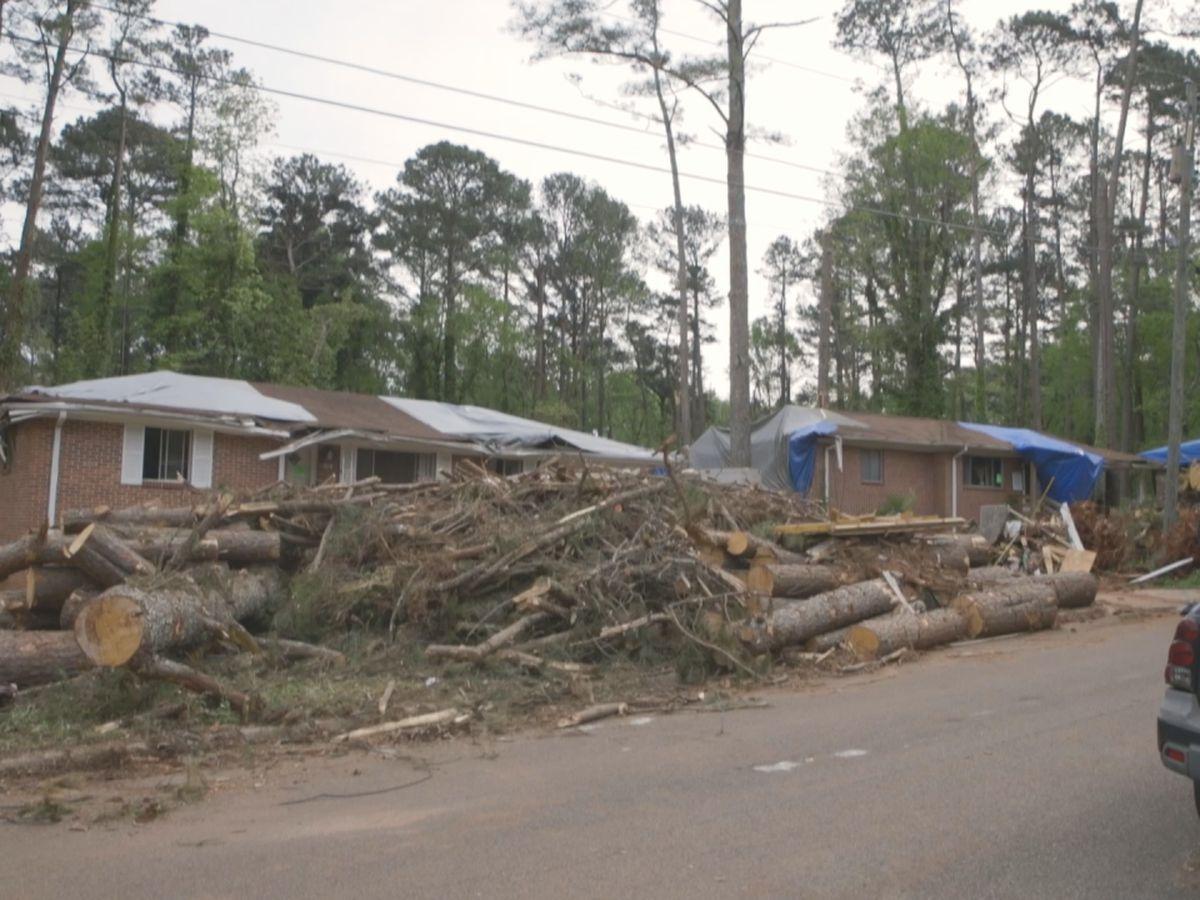 Birmingham DPW begins two-day cleanup of storm debris
